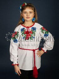 Вишита блуза ЖБВ 13-1