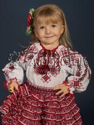 Вишита блуза ЖБВ 14-1