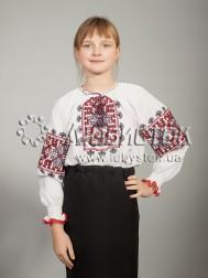 Вишита блуза ЖБВ 19-4