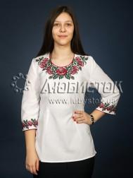 Вишиванка-блуза ЖБВ 6-5