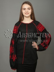 Вишиванка-блуза ЖБВ 24-13 3188842c7adc4
